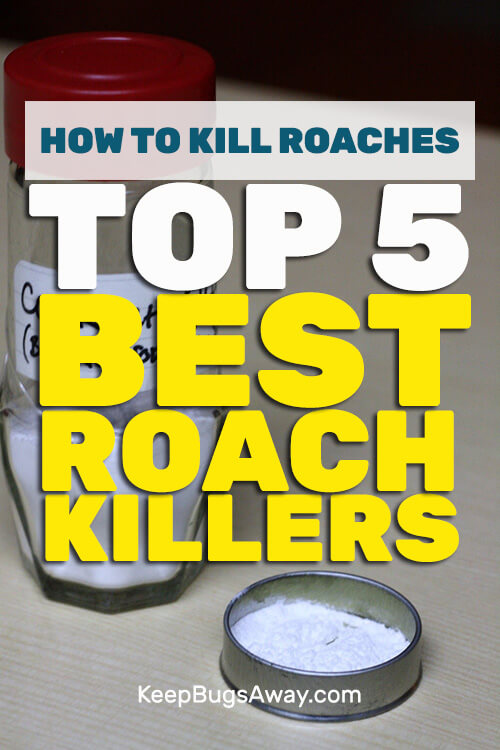 Home Roach Killer. 7 how to get rid of german roaches forever best ...